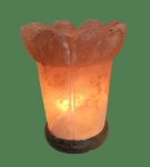 Himalayan Salt Lamp Shaped Pink Vase